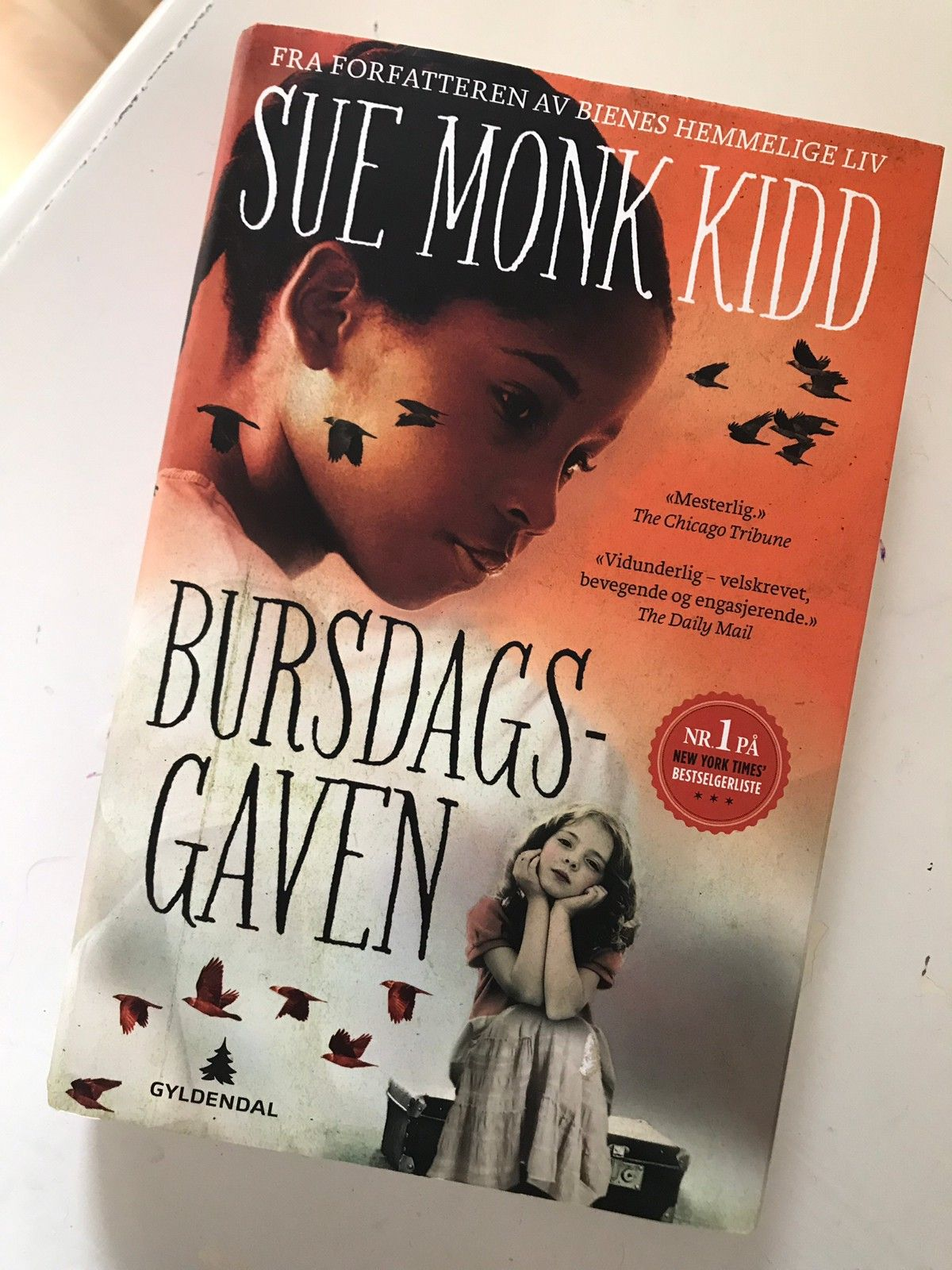 sue monk kidd bursdagsgaven