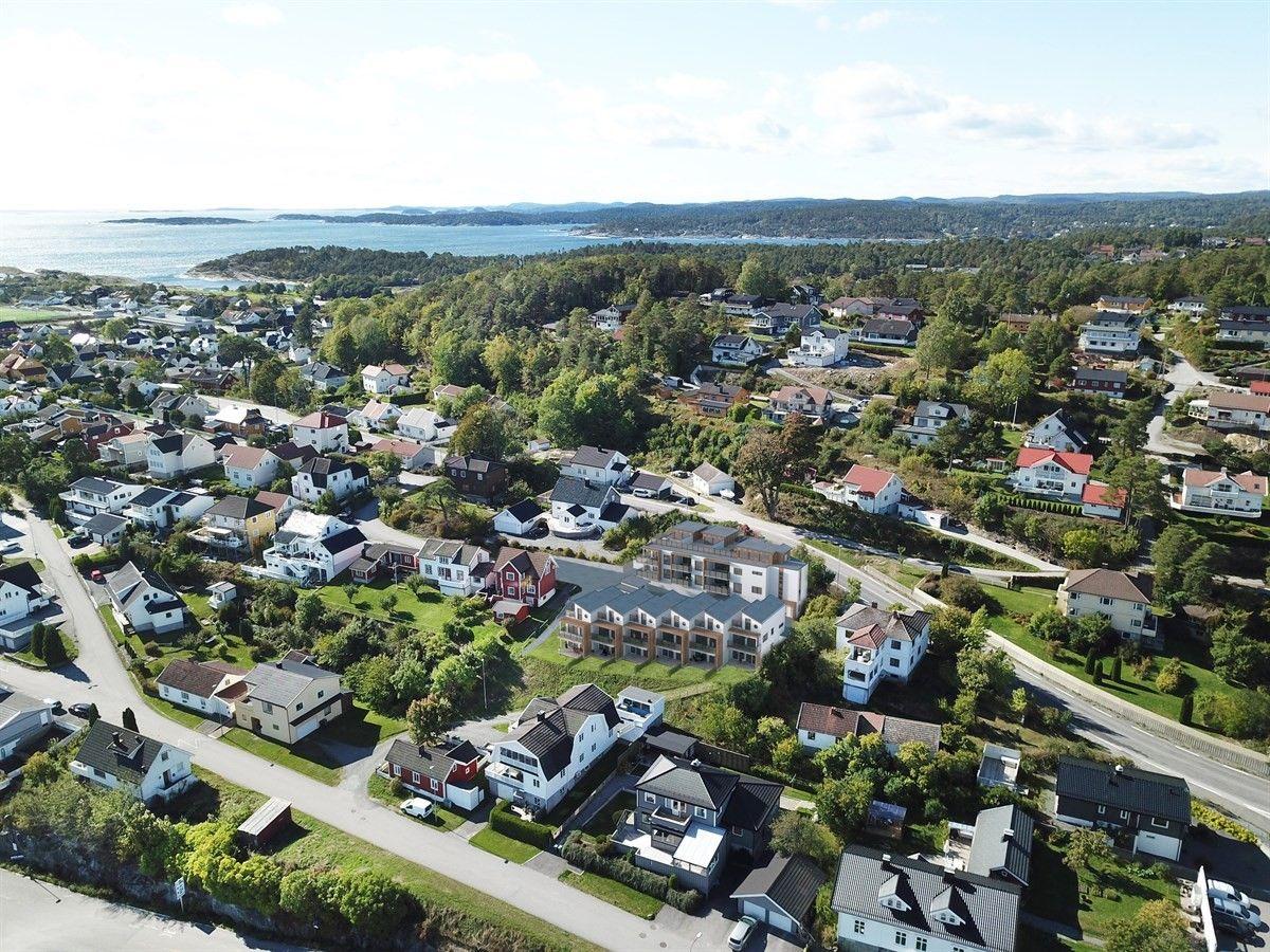 Lenes Ås, Bamble | Sørmegleren