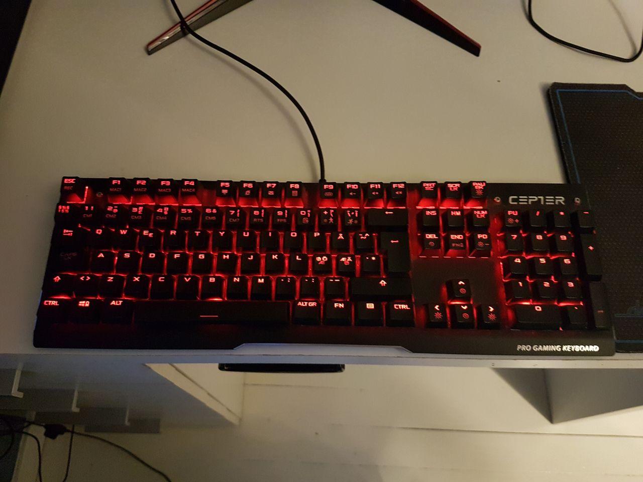 Cepter X 13 Pro gamer | FINN.no