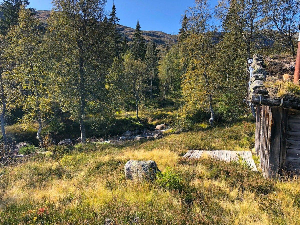 Åmlivegen 57, Valle | Sørmegleren