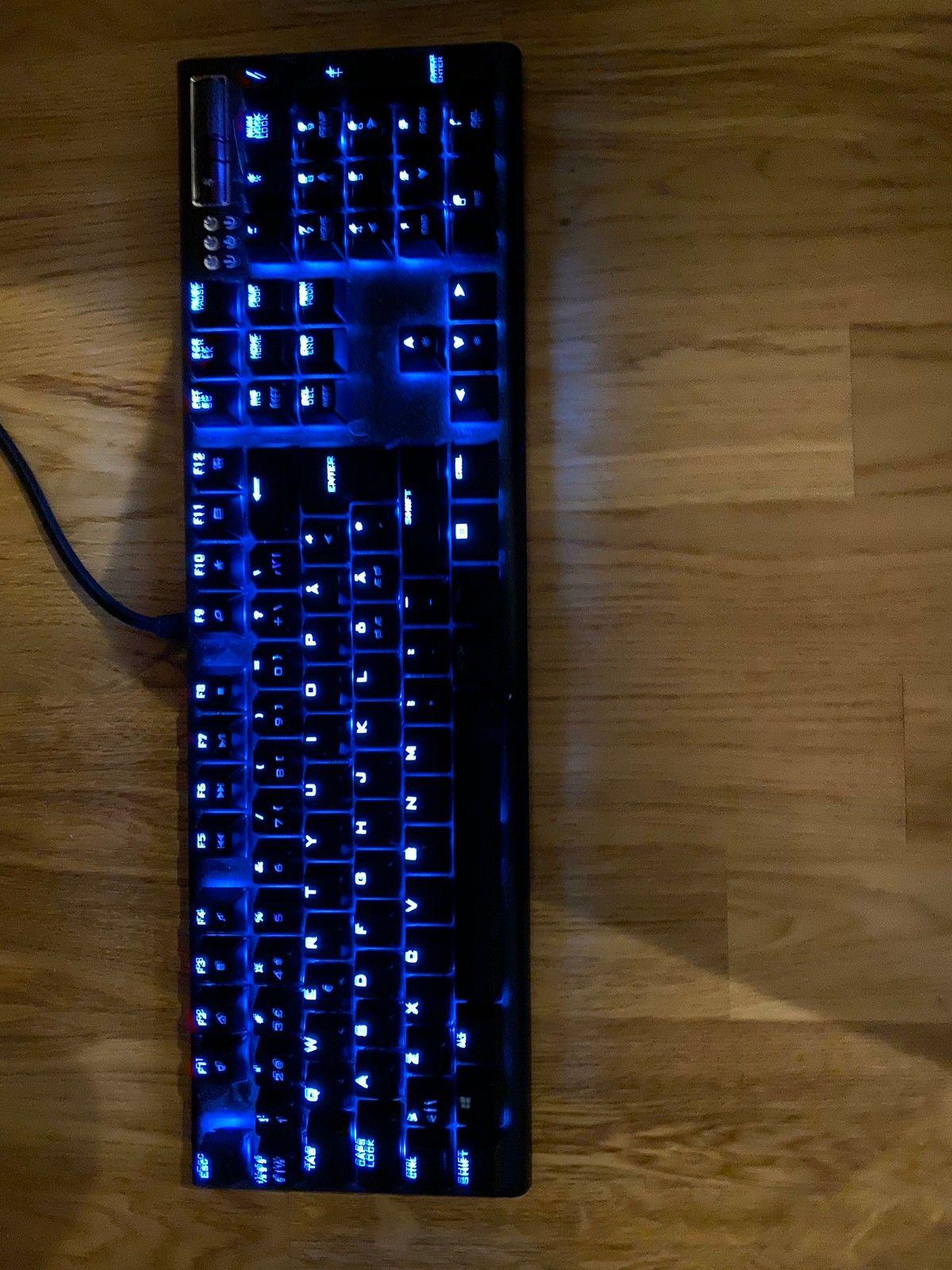 Mekanisk gamingtastatur   FINN.no