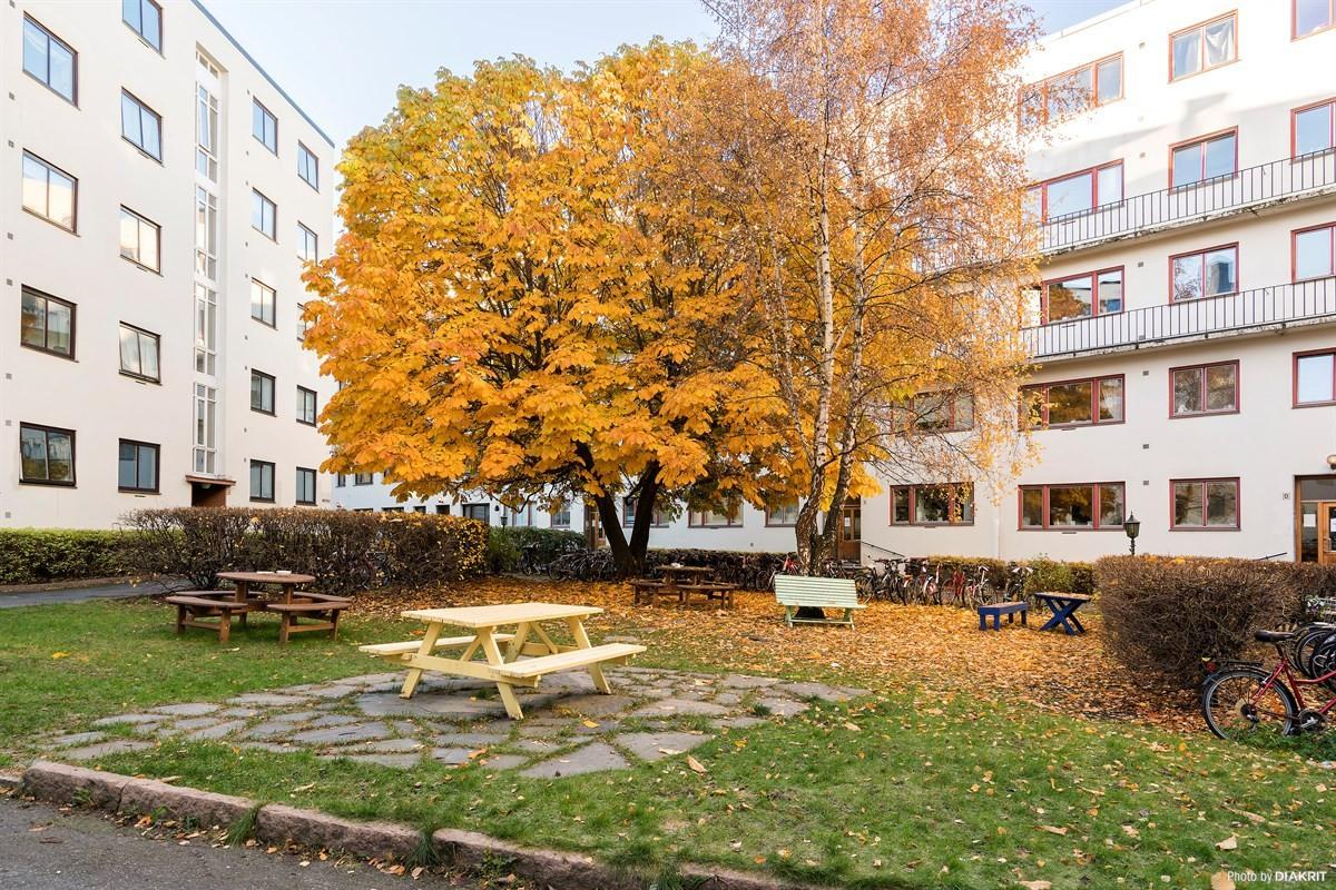 Schala & Partners Sagene - Leilighet - Grünerløkka - Sofienberg - 2 900 000,-