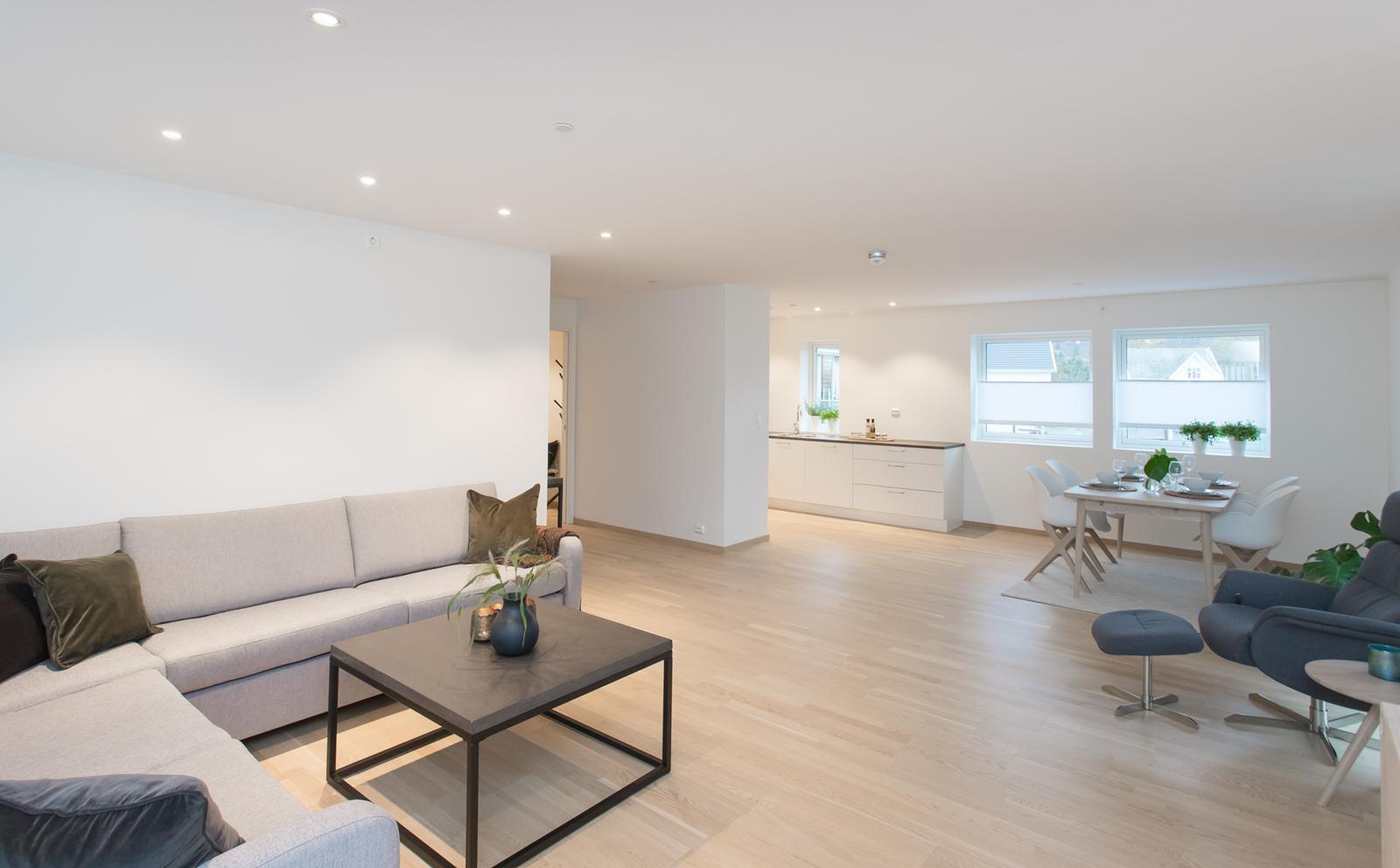 stua-leilighet-101