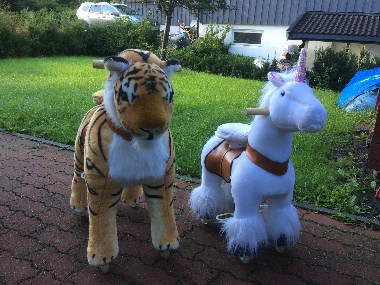 Pony - Jar  - Pony Cycle  Pony 2500 Nok Tiger 4000 Nok - Jar