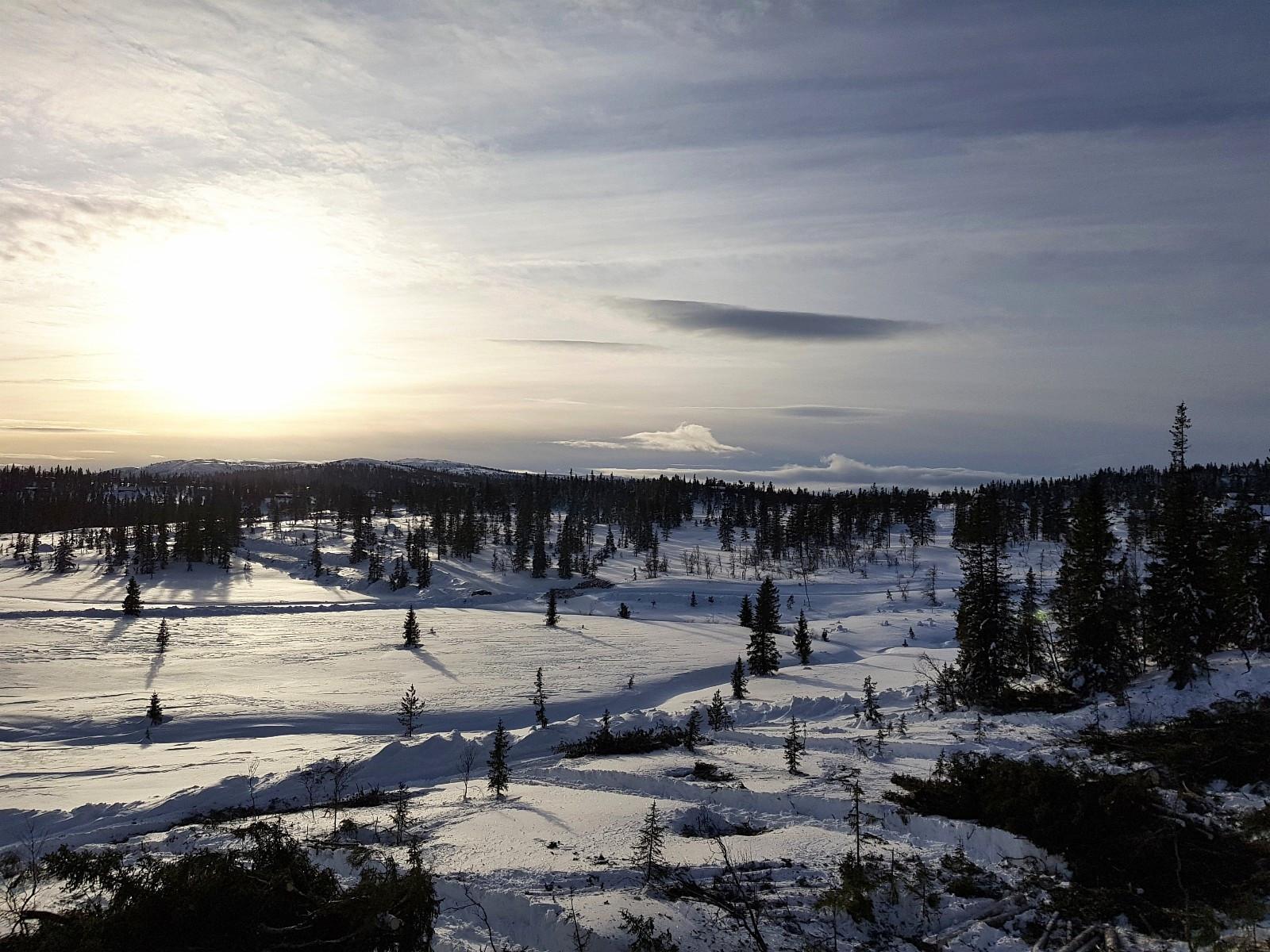Utsikt tomtefelt sør, sørvest.