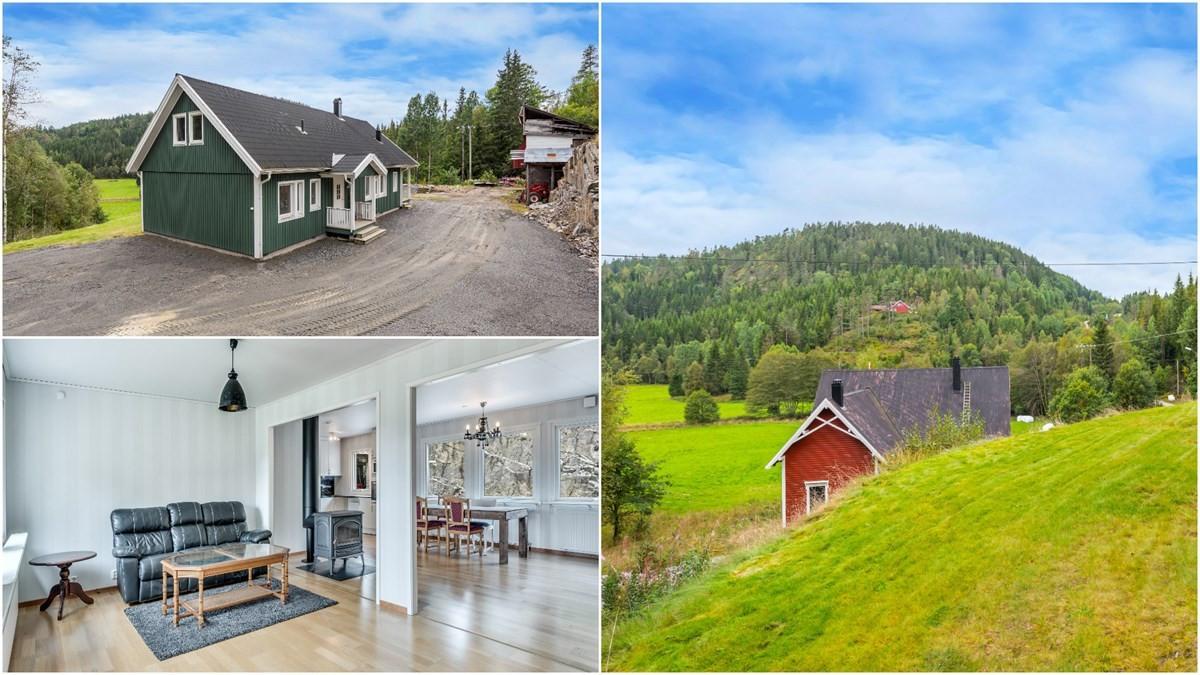 Landbrukseiendom - birkeland - 1 850 000,- - Meglerhuset & Partners
