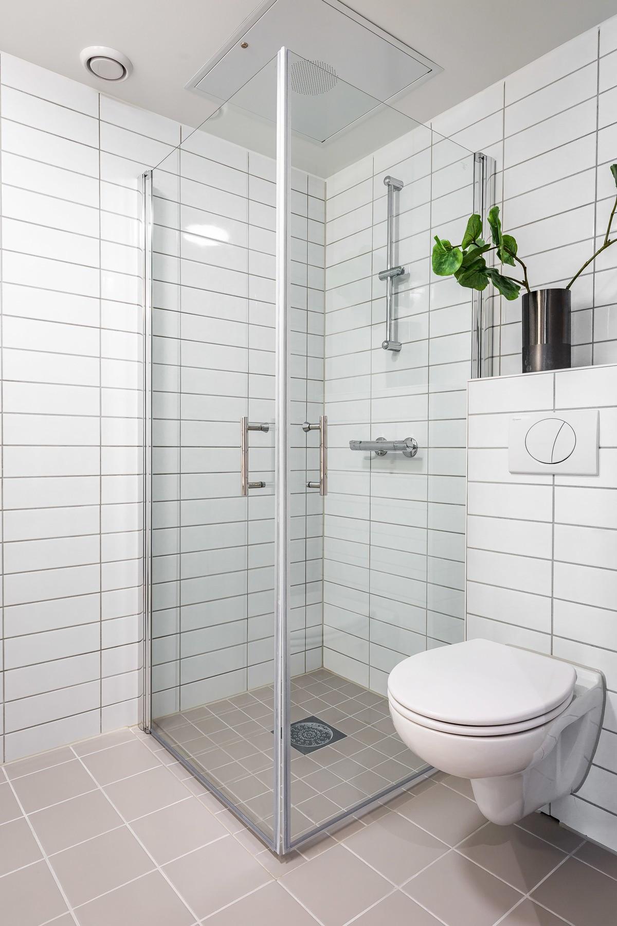 Dusjhjørne og vegghengt toalett