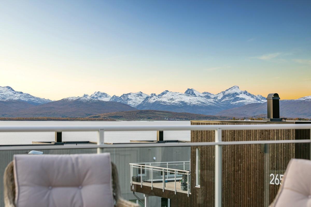 Flott utsikt mot hav og fjell