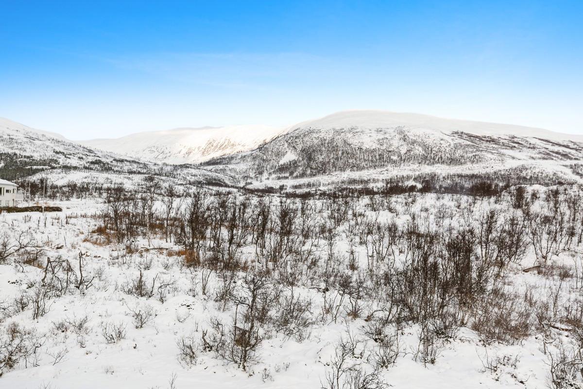 Eiendommen grenser til naturskjønne friarealer med gode tur- og rekreasjonsmuligheter