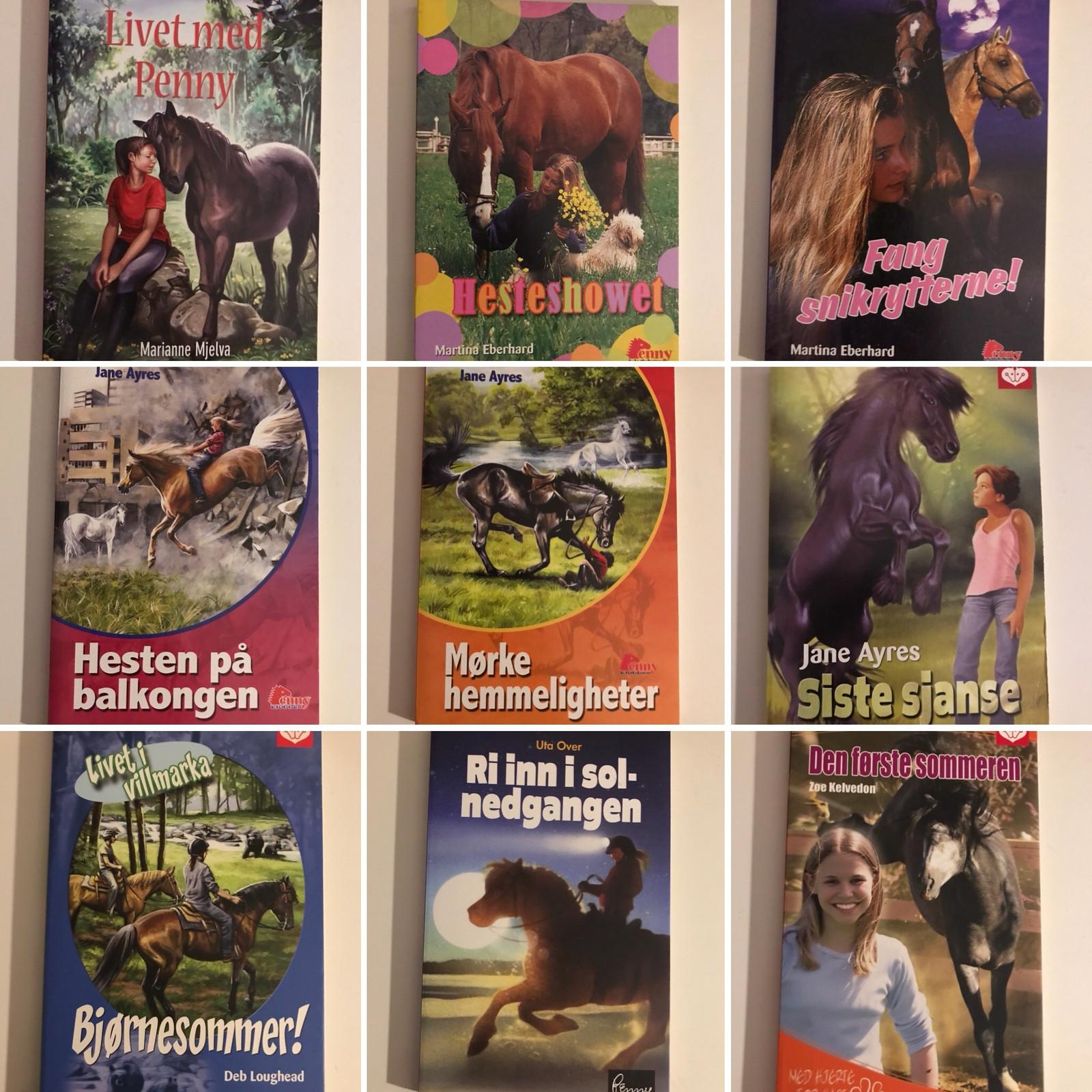 Fantastisk Penny hestebøker og TL bøker+ selges billig | FINN.no RW-65