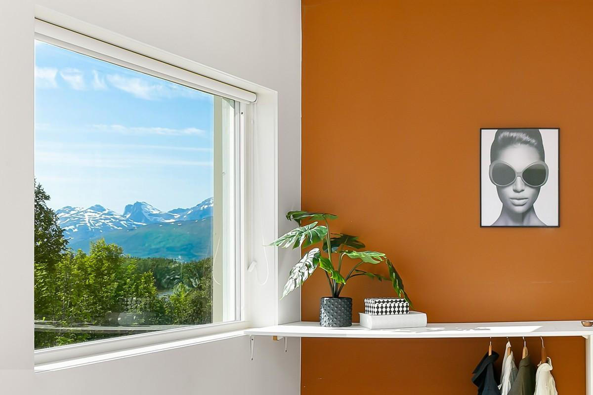 Nydelig utsikt mot natur og fjell