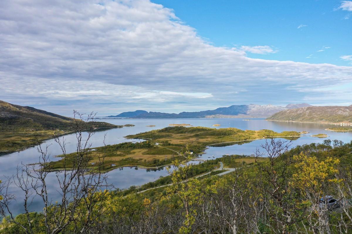 Fantastiske utsiktsforhold ut Skarsfjorden. I forgrunn ser du Skogøya og i bakgrunn ser du den sørlige delen av Rebbenesøya. Trærne som stikker opp i bildet står på tomten og kan enkelt ryddes bort..