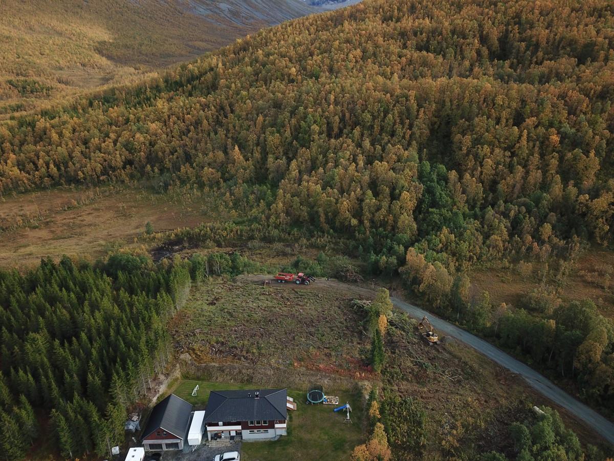 Bjørnskardalen, Fagerfjellet og Hamperokken ligger like bak feltet
