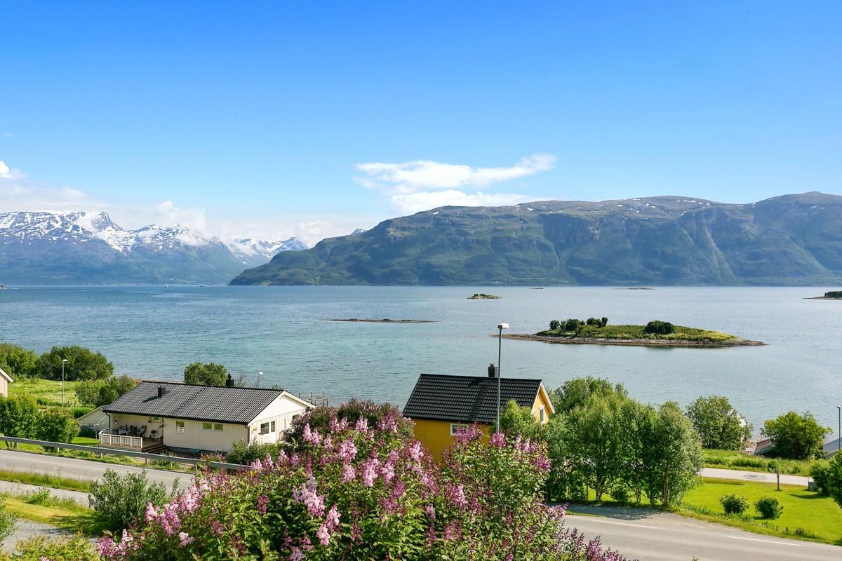 Utsikt fra boligen. Øyen foran i bildet eies i sameie