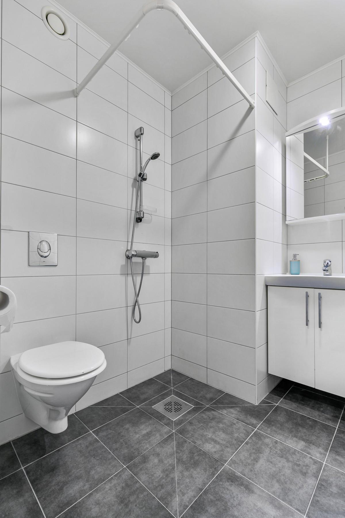 Vegghengt toalett og dusjnisje