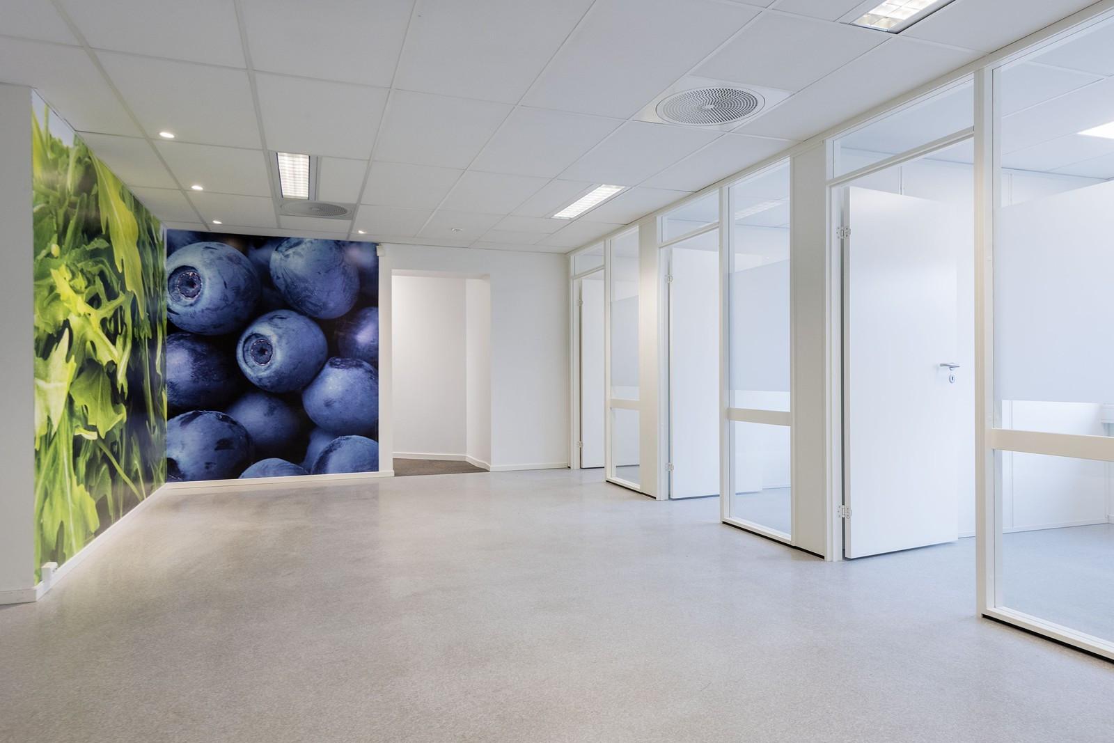 Adgang til lyse og arbeidseffektive kontorer fra fellesareal