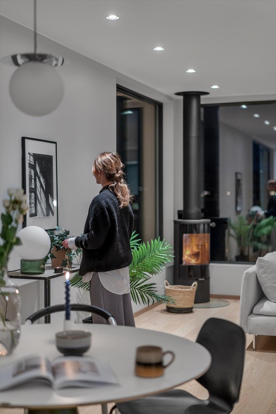 Moderne vedovn i stuen