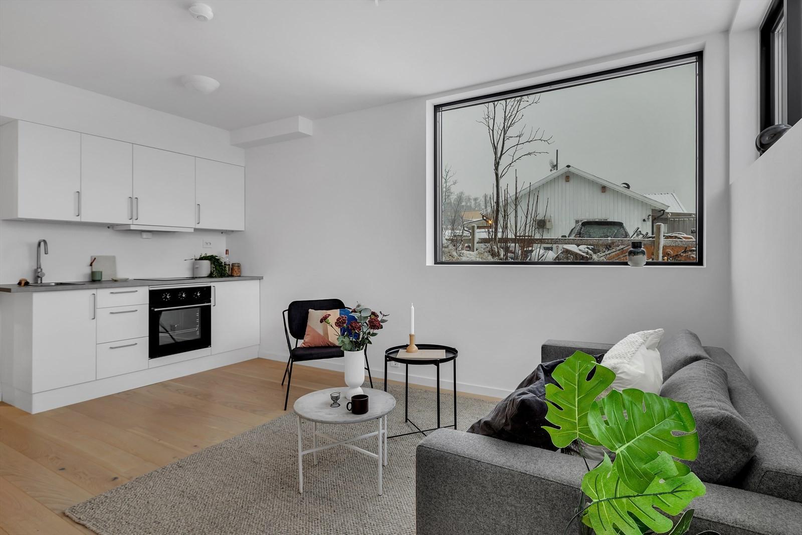 Lys og trivelig leilighet i kjeller med store vinduer