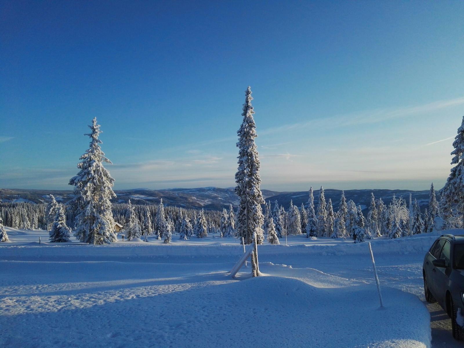 Vinterlandskap Musdalseter