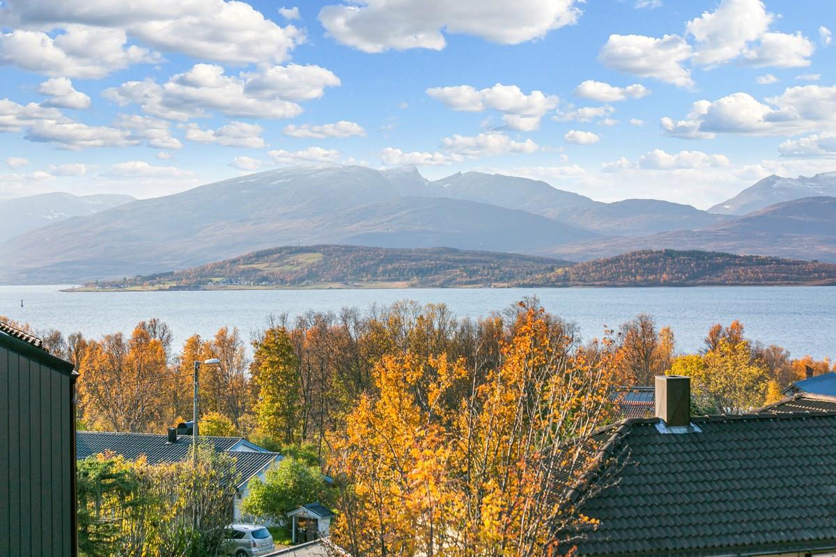 Bligen ligger i et attraktivt boligområde på vestsiden av Tromsøya