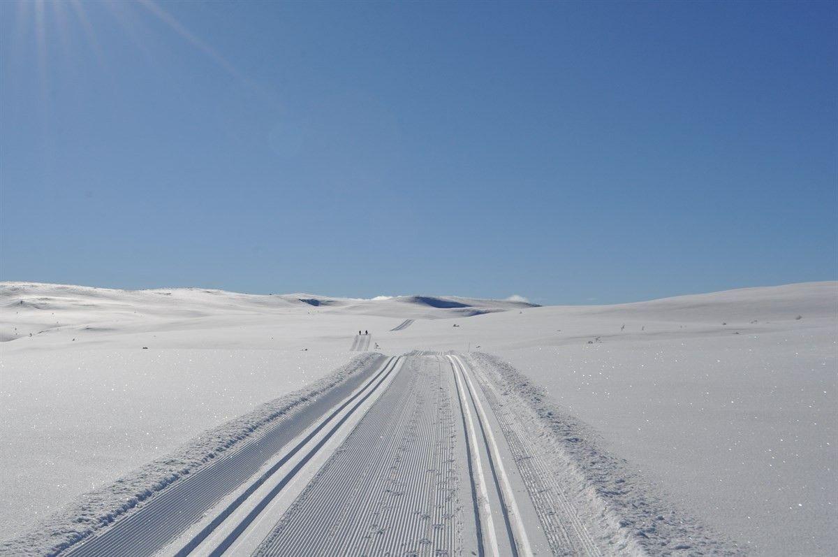Snøsikkert område, med tilrettelagte løyper.