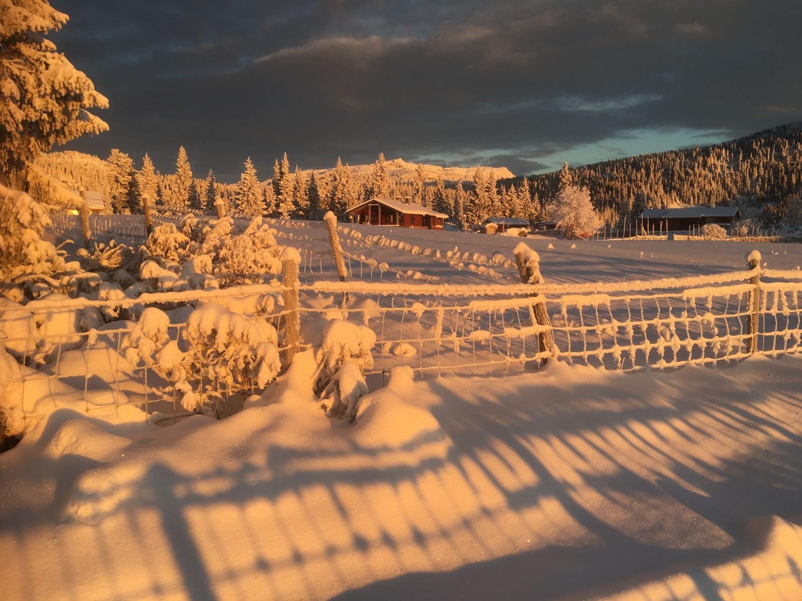 "Vi har tilgang til over 200 tomter i Gudbrandsdalen. Ta kontakt så finner vi ""din drømme tomt""."