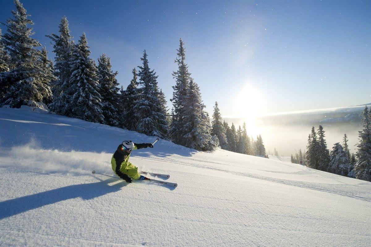 Alpint Kvitfjell.