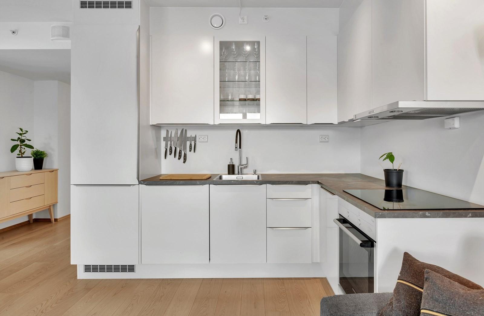 Kjøkken med integrerte hvitevarer