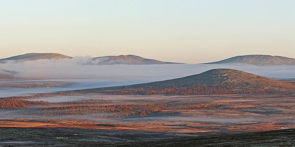 Vilt og vakkert landskap i Goppollenfjellet. Med fantastiske løypenett og turstier. Trolløypa går fra Rondane til Sjusjøen.