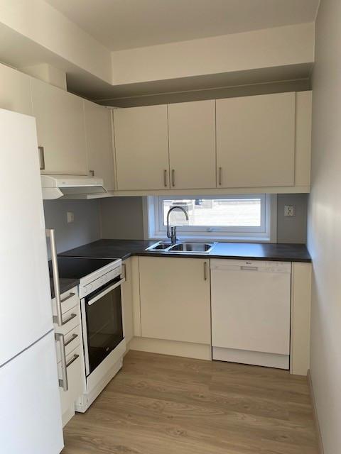 Kjøkken med hyggelig kjøkkenvindu vask
