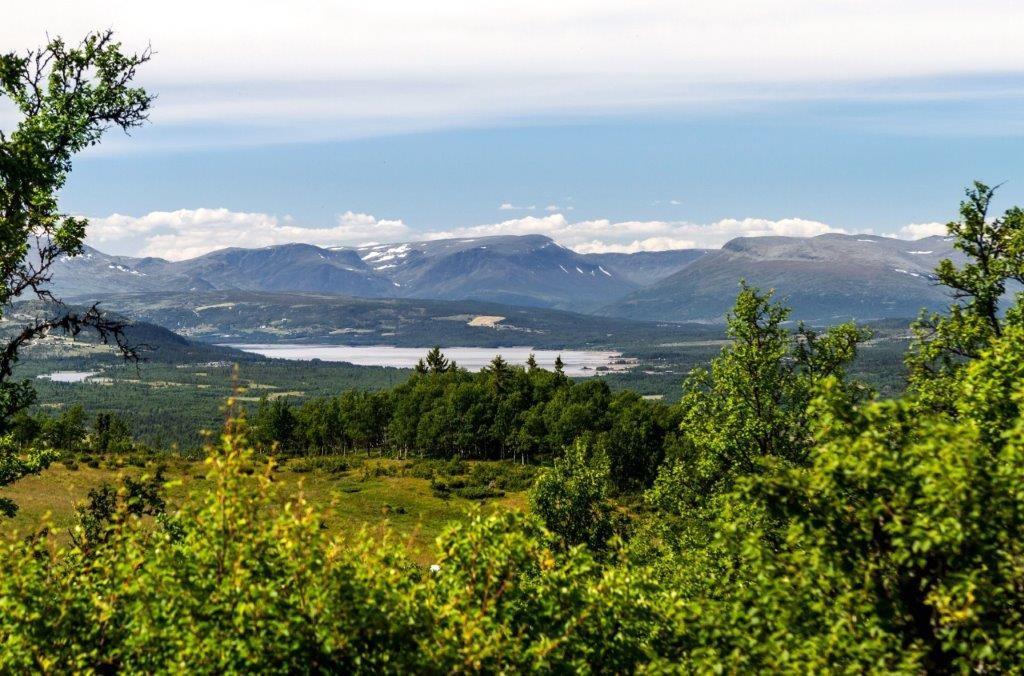 Nystølfjellet ligger klar for deg med hytta Høgtind fra Buen Gruppen