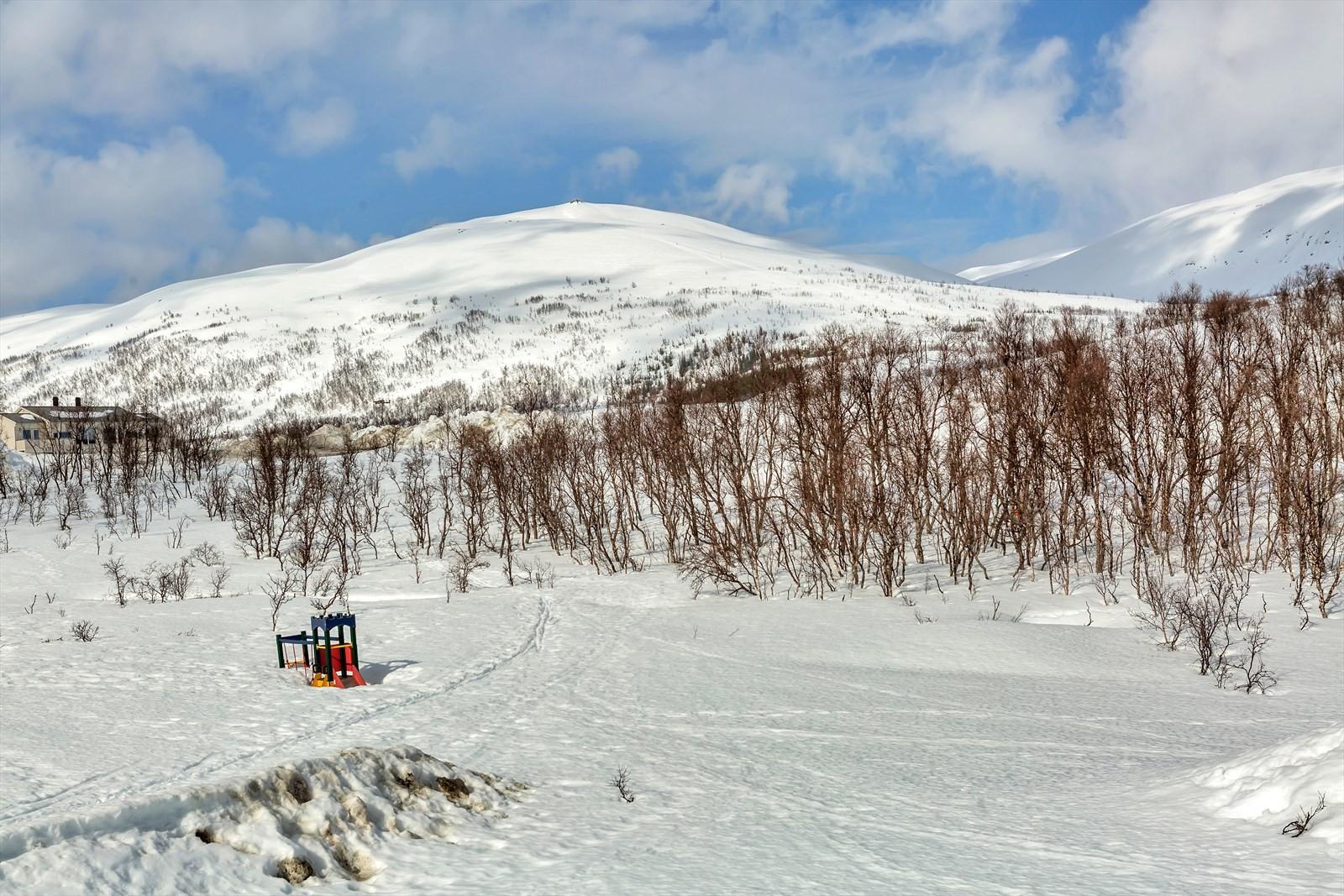 Fra Finkavikhaugen har man praktisk talt  direkte tilgang til natur og fjell.