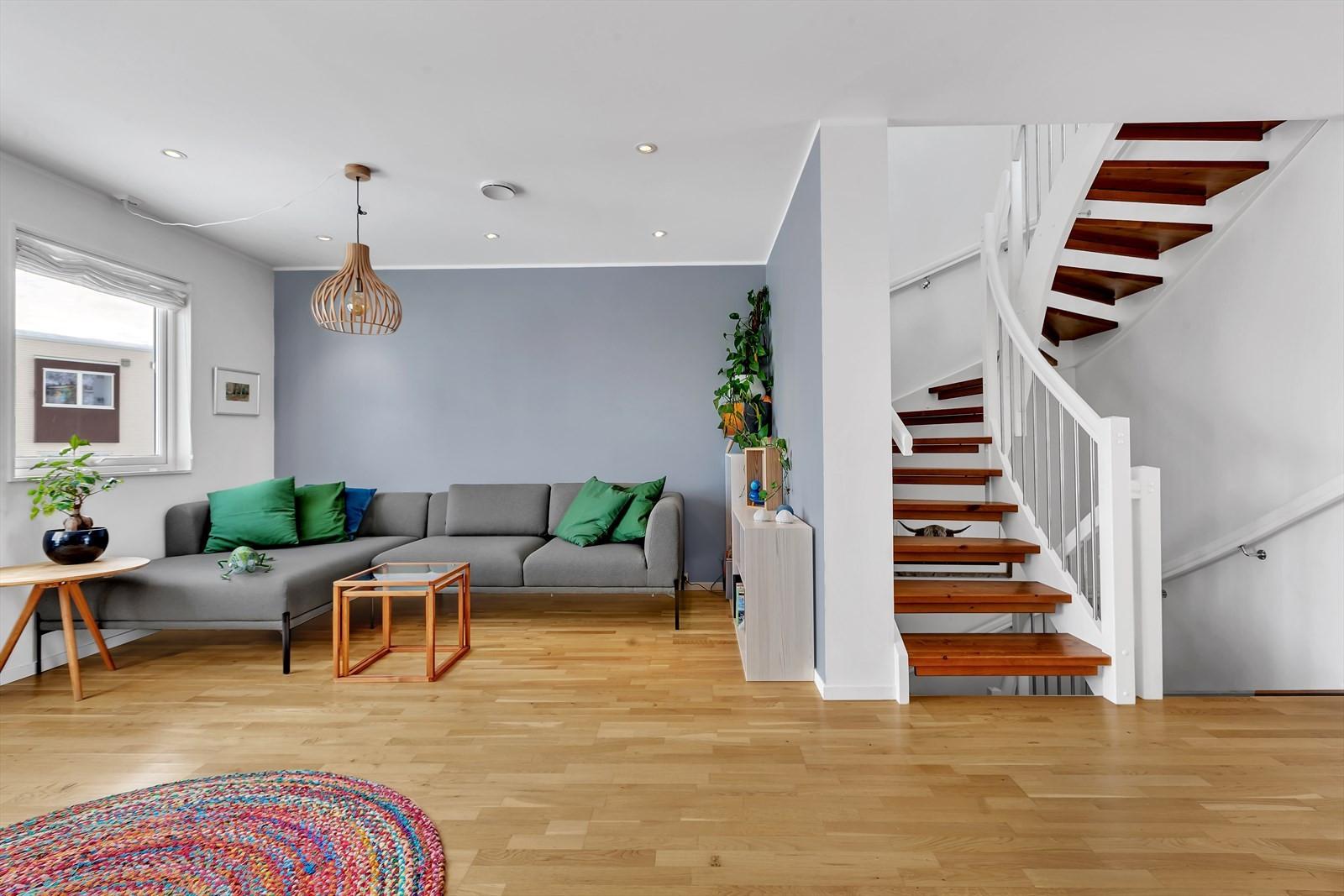 Tidsriktige farvevalg på kontrastvegg i stue.