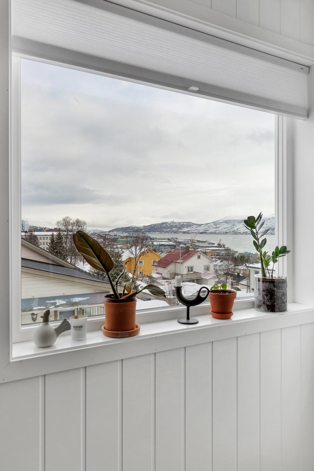 Utsikt mot nord fra loftet