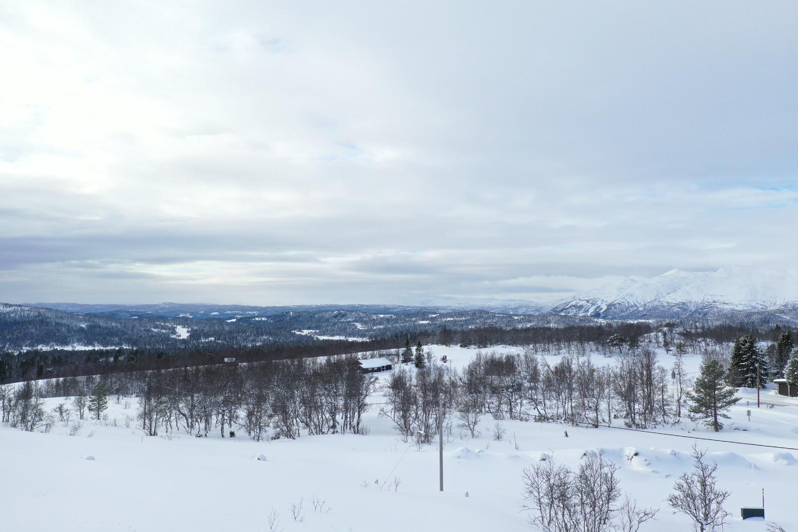 Utsikt fra tomte området.