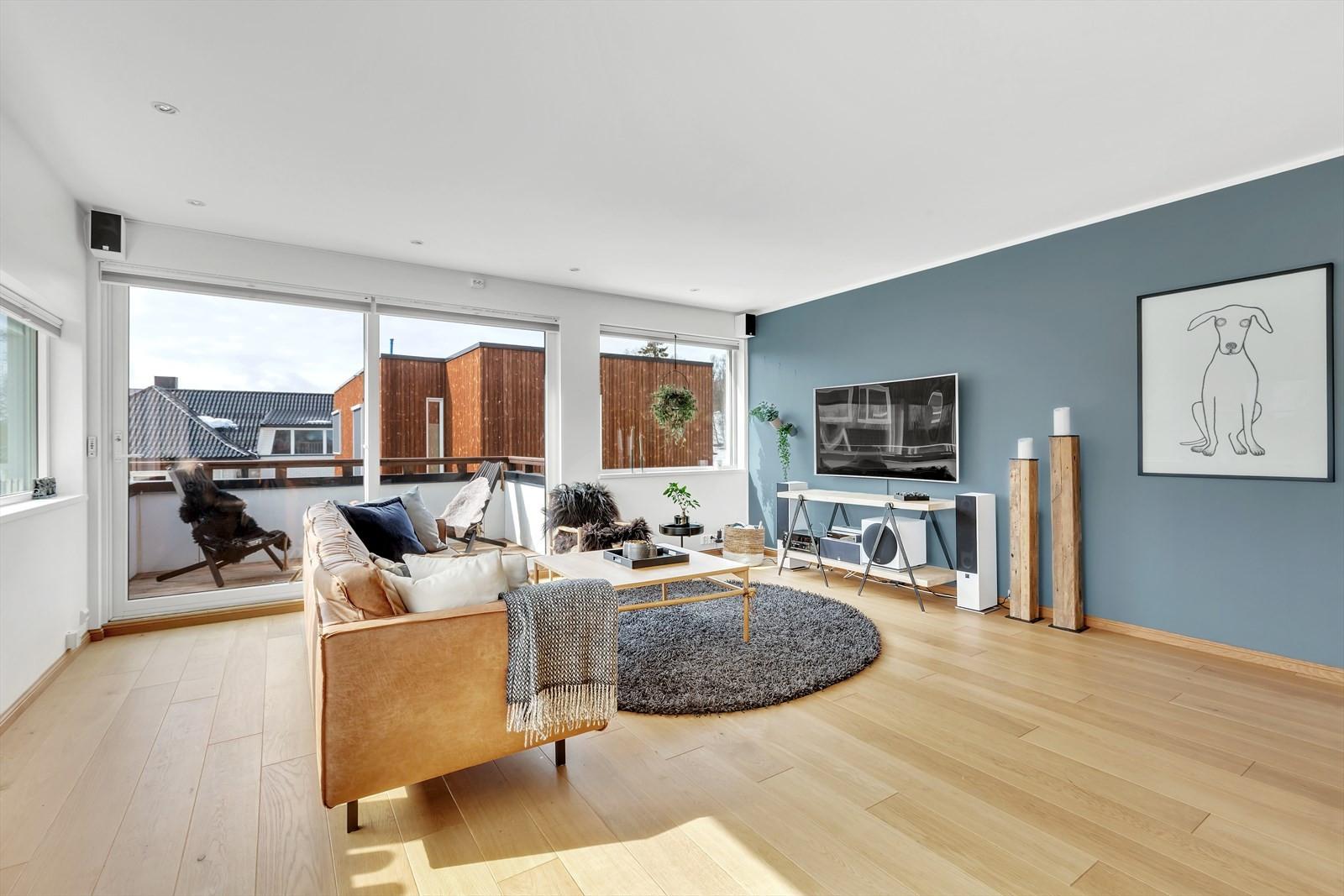 God plass til møblement i dagligstuen. Herfra er det utgang til sørvendt veranda