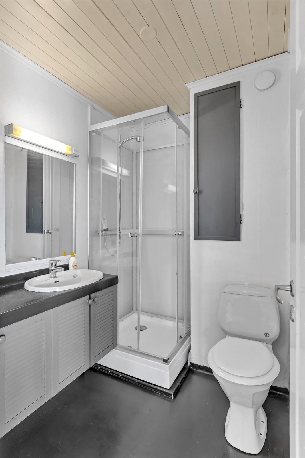 Badrom med toalett og dusjkabinett 1. etasje.