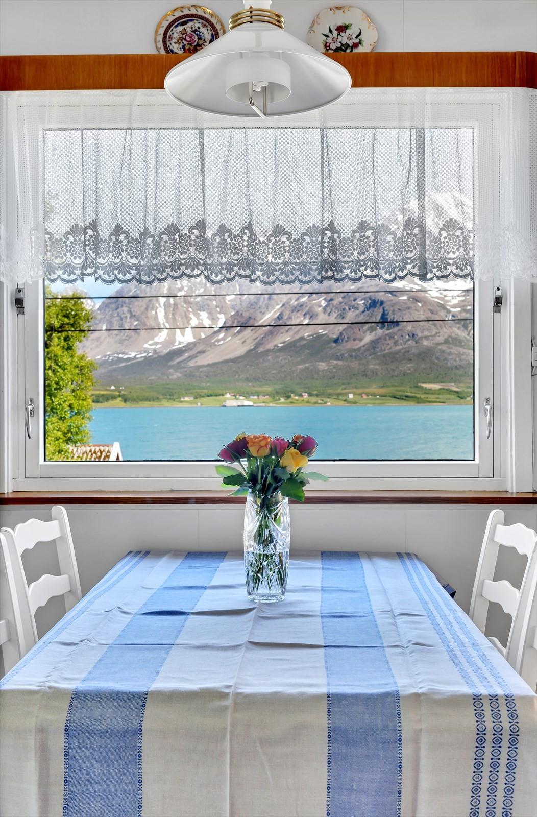 Utsikt fra kjøkken.