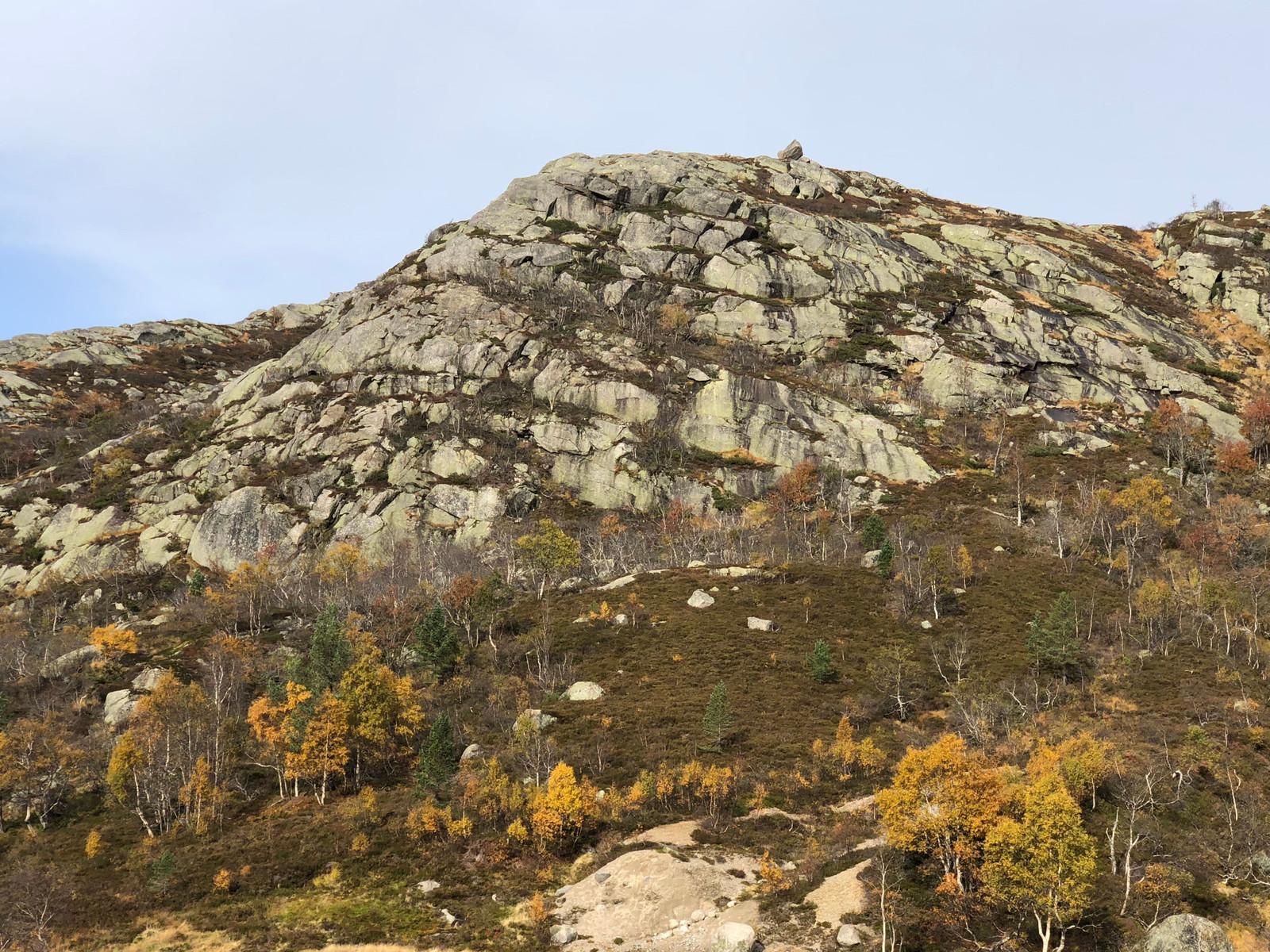 """De fantastiske fjellene som omkranser hytte grenden """"Reinshommen II"""" - Nesten helt oppe med villreinen på høyfjellet."""