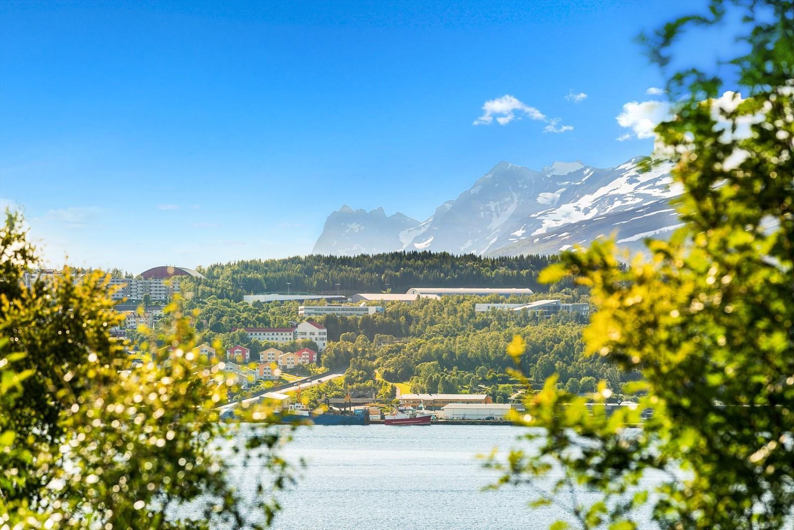 Nydelig utsikt til Tromsøya og Kvaløyfjellene i bakgrunnen.