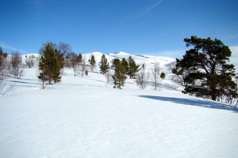 Slike vinterforhold er selve lykken for mange av oss