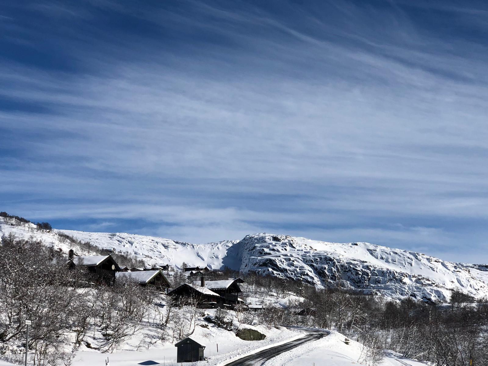 Bilder fra Hattevarden Hyttegrend - Vilt & Vakkert