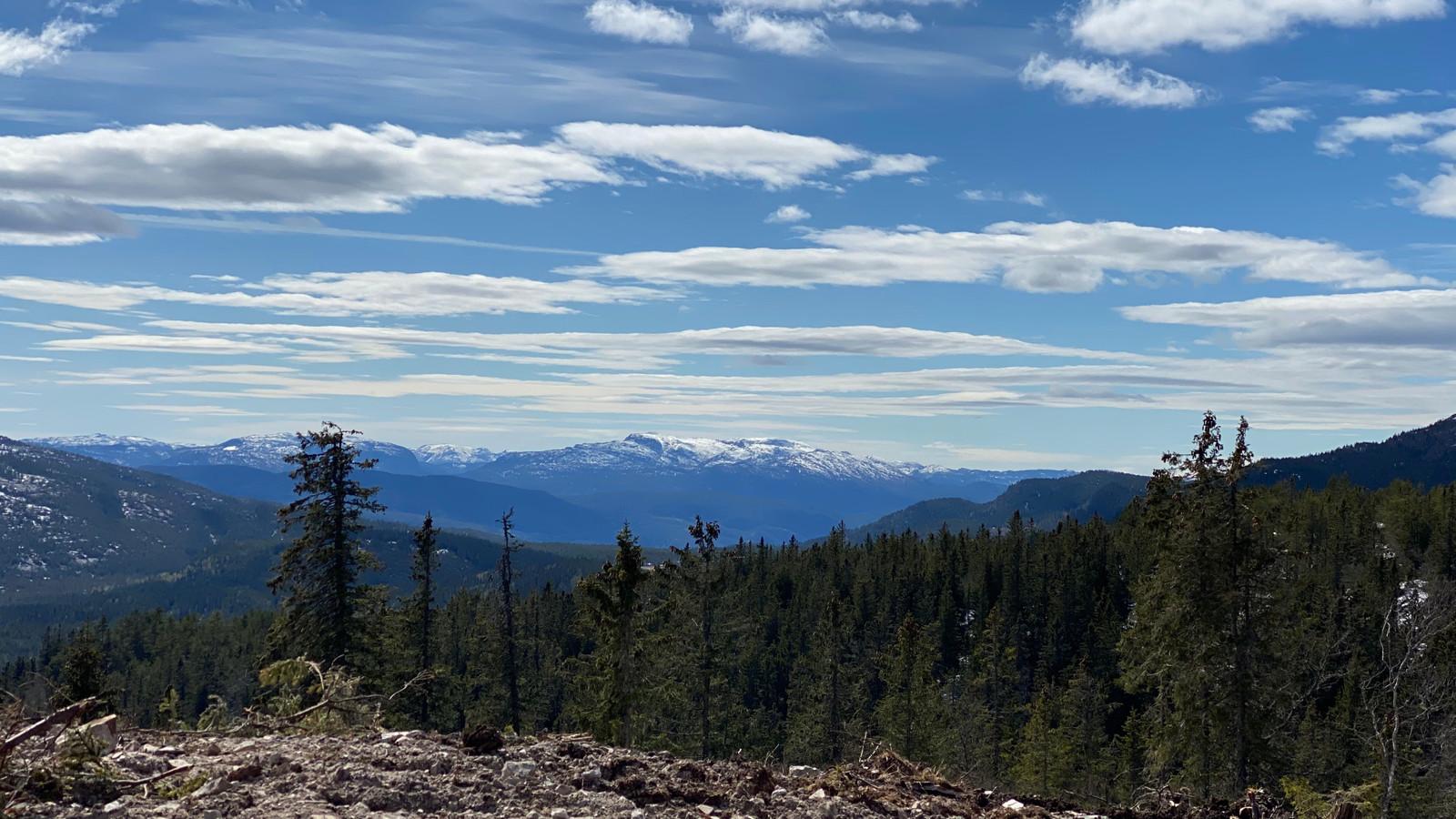 Panorama Utsikt fra tomten