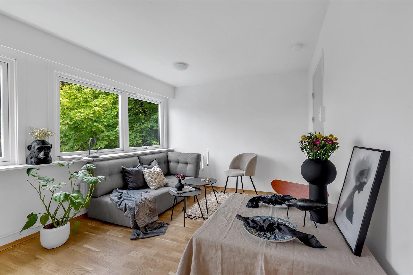 Parkgata 14 er en snedig studioleilighet med god beliggenhet i øvre sentrum