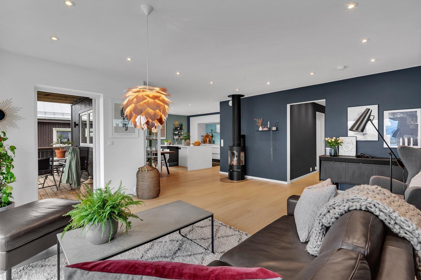 Moderne og pen stue