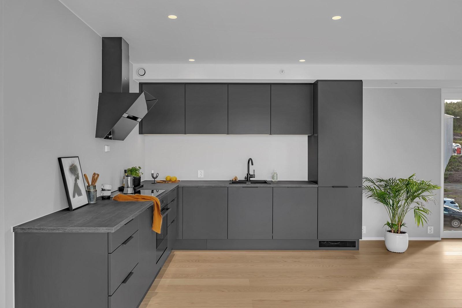 Moderne kjøkken med integrerte hvitevarer og down-lights