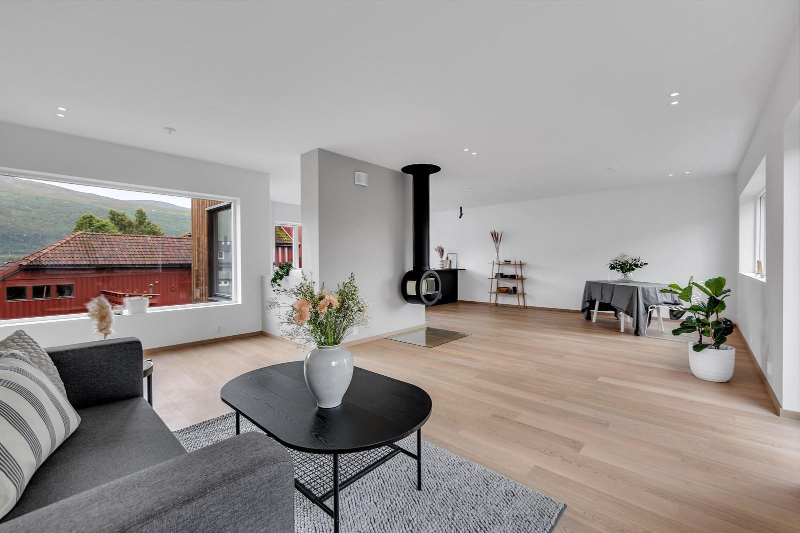 Stor stue hvor det er plass til mye møbler