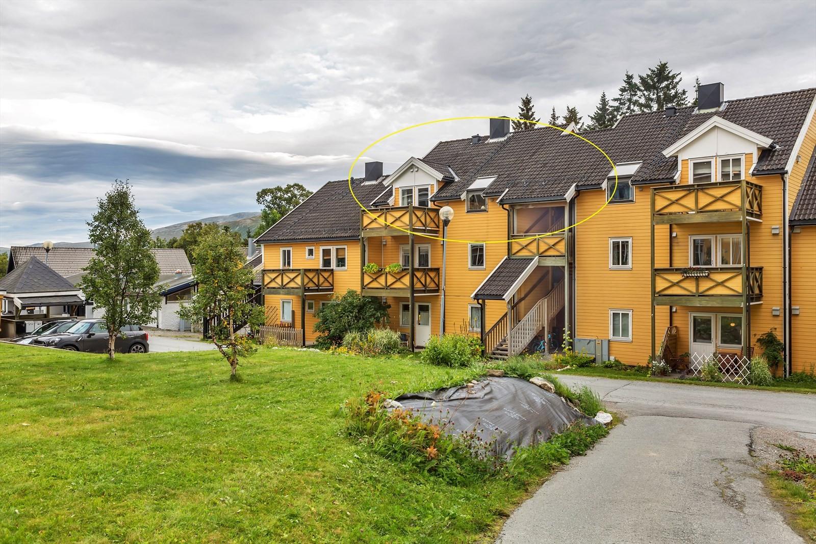 Bjørkås terrasse 12E
