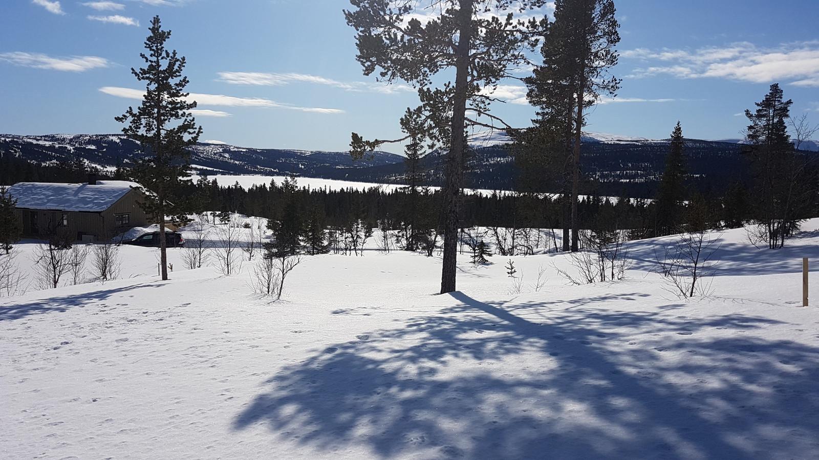 Utsikt fra feltet til Gålåvannet