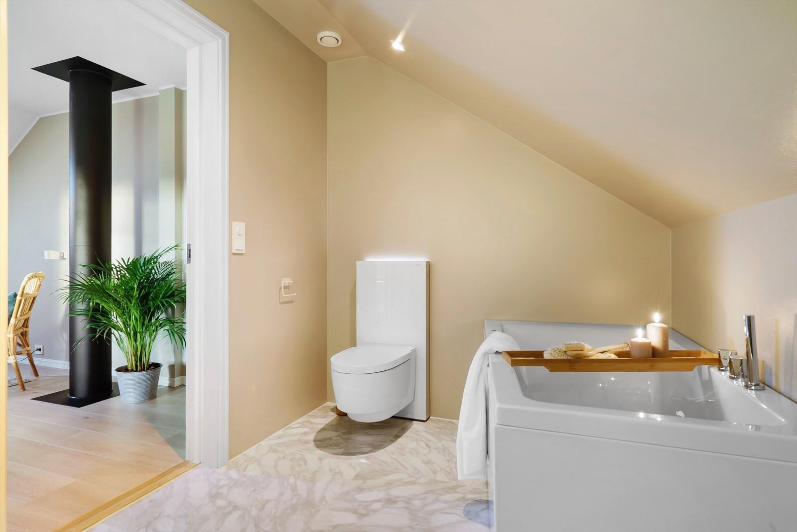 Monolith toalett sisterne med kullfilteravsug og stemningslys.